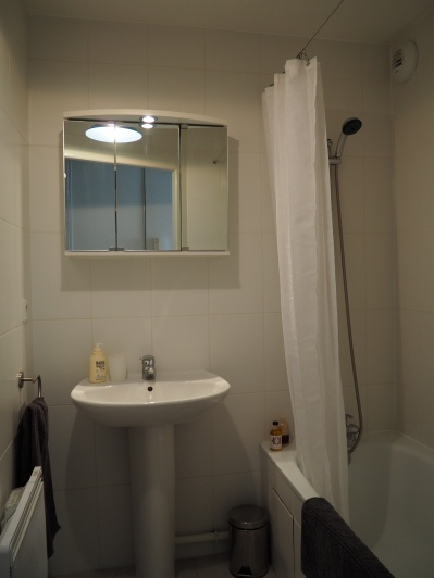 Bath with shower, washbasin, mirror cabinet