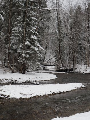 A snowy walk along la Dranse river